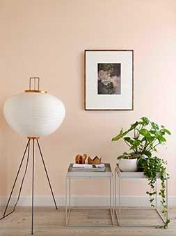 Dreamy Bedroom Colours Peach Blossom